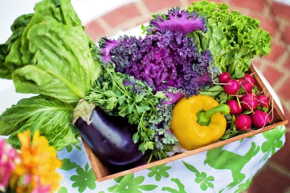 nasiona warzyw gruntowych